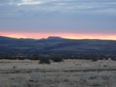 Location Scout: Sonoma desert in Arizona at sunset